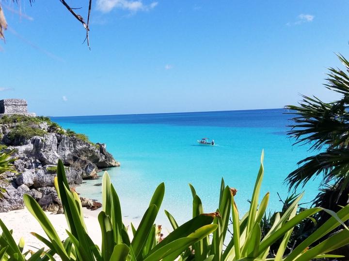 5 Things to Do in RivieraMaya